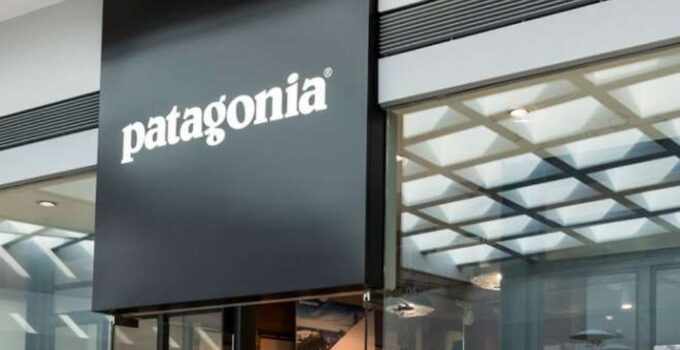 Patagonia Competitors in 2021